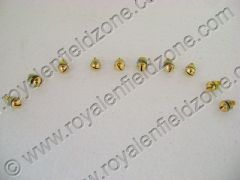 MUDGUARD SCREWS IN BRASS